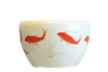 D-027 Chinese pot goldfish